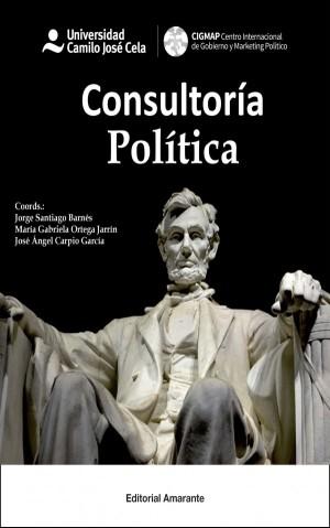 consultoria-politica-600